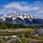 PAINTING THE TETONS by Charlene Aycock IPA