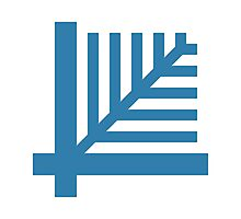 LiveScript Logo Photographic Print