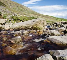 Mahon Falls and River  by Martina Fagan