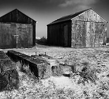 Fishermens sheds, Winterton, Norfolk by DaveTurner