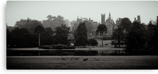 The Castle of Alton Towers. by Ruth Jones