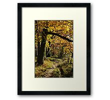 West Tanfield Framed Print