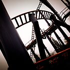 Maze of the Roller Coaster. by Ruth Jones