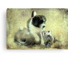"""& they call it Puppy Love ..."" Canvas Print"