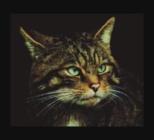T Shirt Scottish Wildcat by Linda More