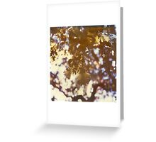 Nothing else matters Greeting Card