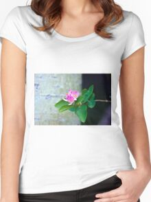 Honey Suckle Blossoms - Digital Oil  Women's Fitted Scoop T-Shirt