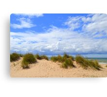 Beach Grass on a Late Summers Day Canvas Print
