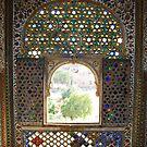 Palace Fort Window, Bikaner, Rajasthan, India by RIYAZ POCKETWALA