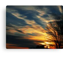 Winter Colors Canvas Print