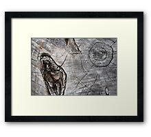 Desert Trek Framed Print