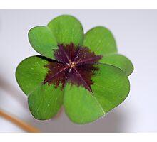 Good Luck! Photographic Print