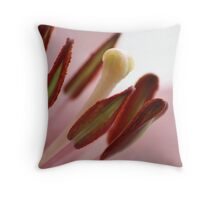 Easter Pink Throw Pillow