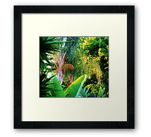 Callifornia Jungle Framed Print