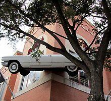 Flying Car by Debbie Robbins