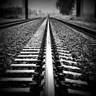 Trackin' by csouzas