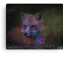 Cunning and Sly Canvas Print