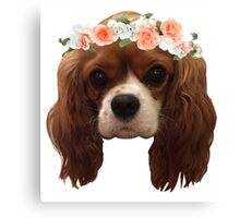 King Charles Cavalier with flower crown Canvas Print