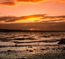 Skerries by Martina Fagan