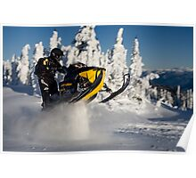 Yellow Bellied Snow Sucker Poster