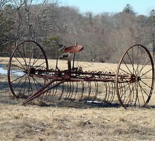 Put Out To Pasture by MotherNature