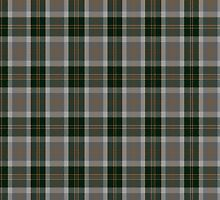 00514 Bannockbane Hunting (MacBean and Bishop) Tartan  by Detnecs2013
