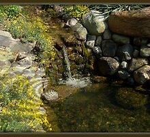 Spring Pool by DALucas
