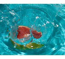 Grapefruit #2 Photographic Print