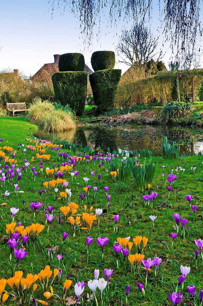 English Country Garden by JEZ22