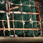 Lowertown Window by KBritt
