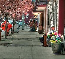 Downtown Punxsutawney PA by vigor