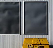 SALT-GRIT by Mark E. Coward