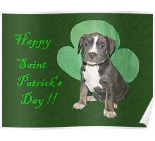 Happy Saint Patty's Day! Poster