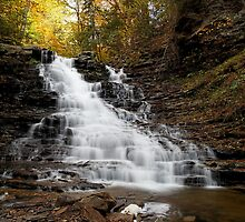 F. L. Ricketts Falls (Autumn) by Tim Devine