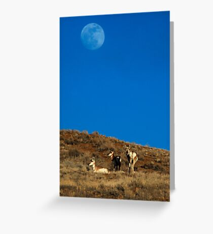 Full Snow Moon Rising - Over The Red Desert Greeting Card