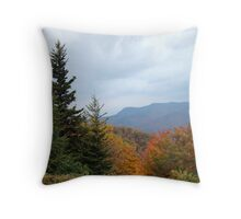 Fall on the Blue Ridge Parkway Throw Pillow