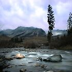 Big Wood River North of Sun Valley, Idaho by ayresphoto