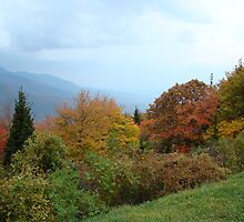 Fall on the Blue Ridge Parkway II by BLemley