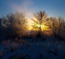 Wintry Sunrise by Mark Van Scyoc