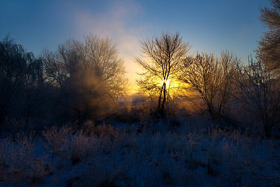 Wintry Sunrise by Mark Van Scyoc