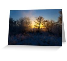 Wintry Sunrise Greeting Card