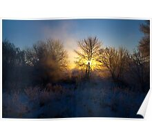 Wintry Sunrise Poster