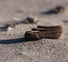 Itty Bitty Driftwood  by Gary Chapple
