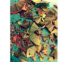 Colored Pencil Shavings Photo Photographic Print