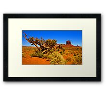 The Painted Valley Framed Print
