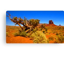 The Painted Valley Canvas Print