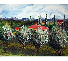 Italian Countryside Photographic Print