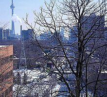 downtown,Toronto by winterland