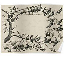 Theodor Kittelsen Illustration page73 Sagobok för barn  Poster