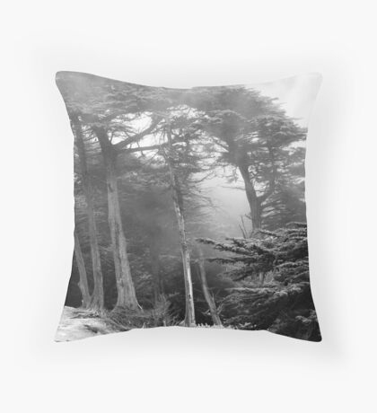 It's hard to see the trees for the fog Throw Pillow